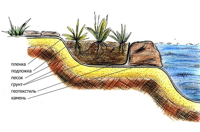 Как сделать пруд из болота своими руками 42