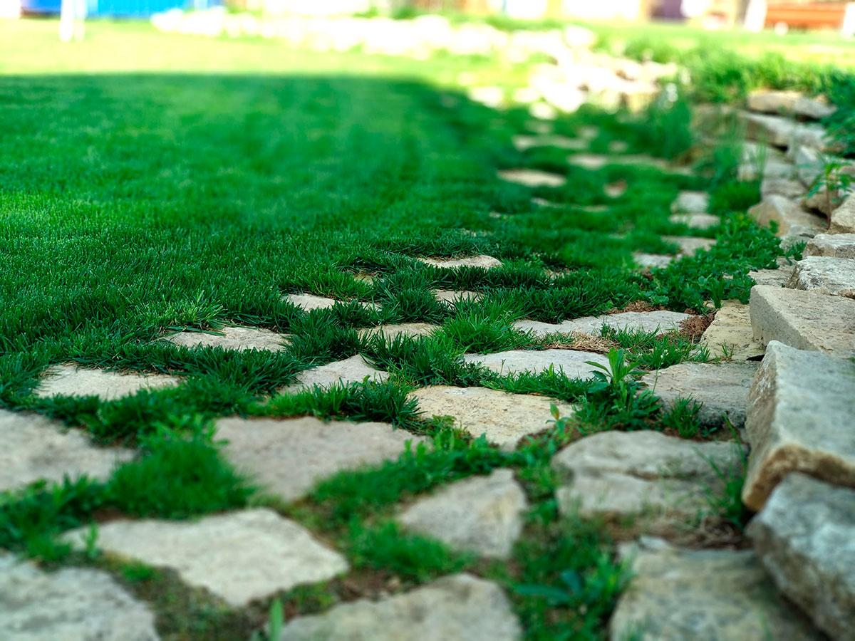 Ландшафтный дизайн, системы полива, рулонный газон, пруды, укладка брусчатки, газон Ижевск, озеленение