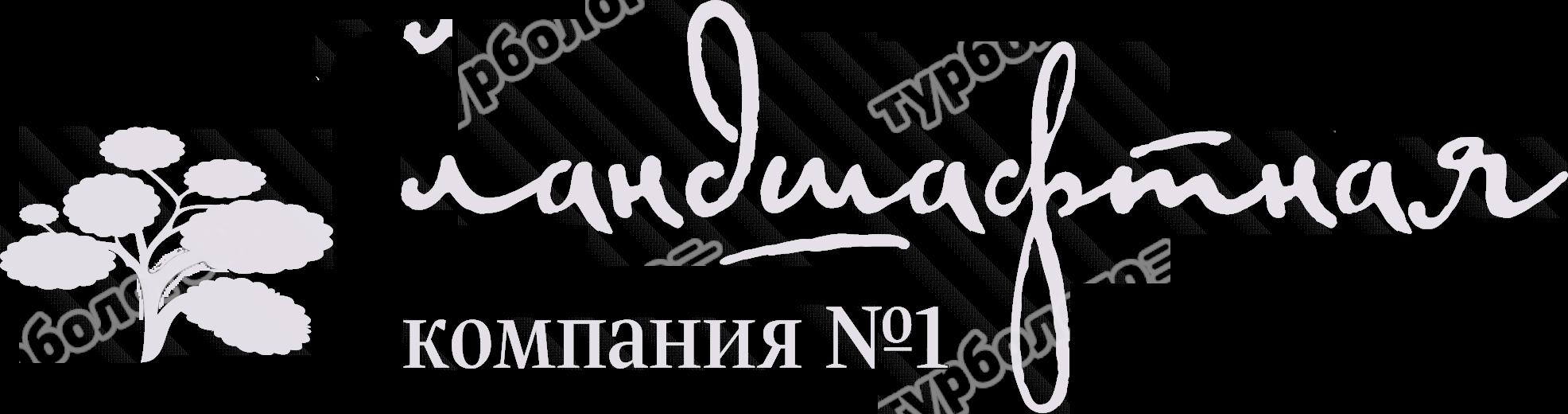 Landshaftnyj-dizajn-Rulonnyj-gazon-Sistemy-poliva-Prud-kupalnyj-Blagoustrojstvo-Ozelenenie-Posadki-krupnomerov-v-Izhevke1